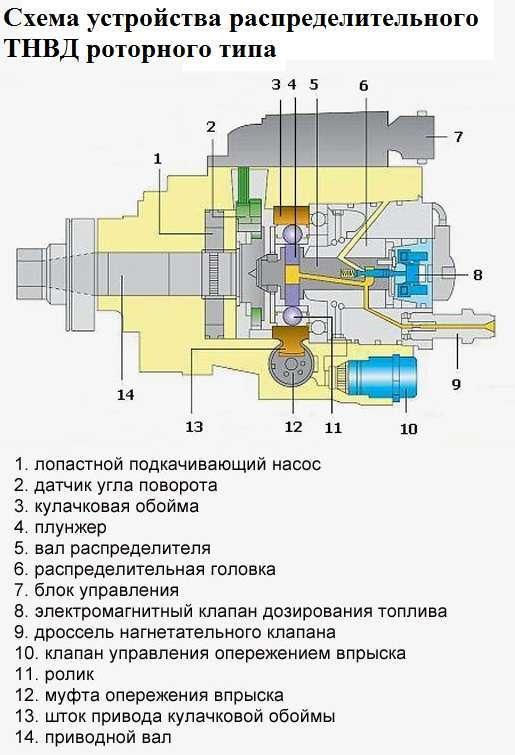 Схема устройства роторного ТНВД