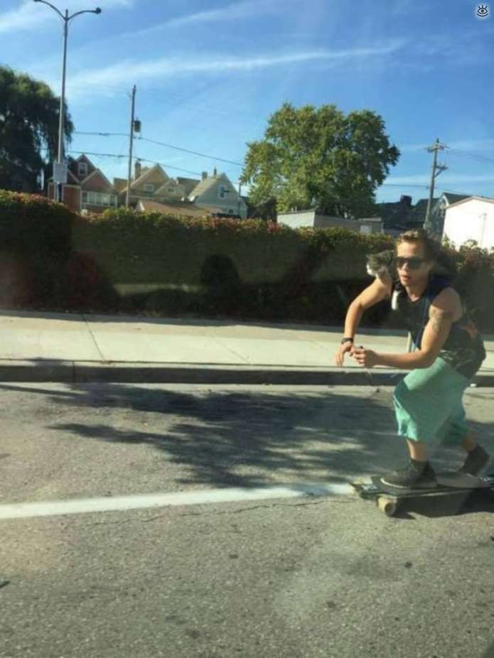 Курйози на дорозі (46 фото)