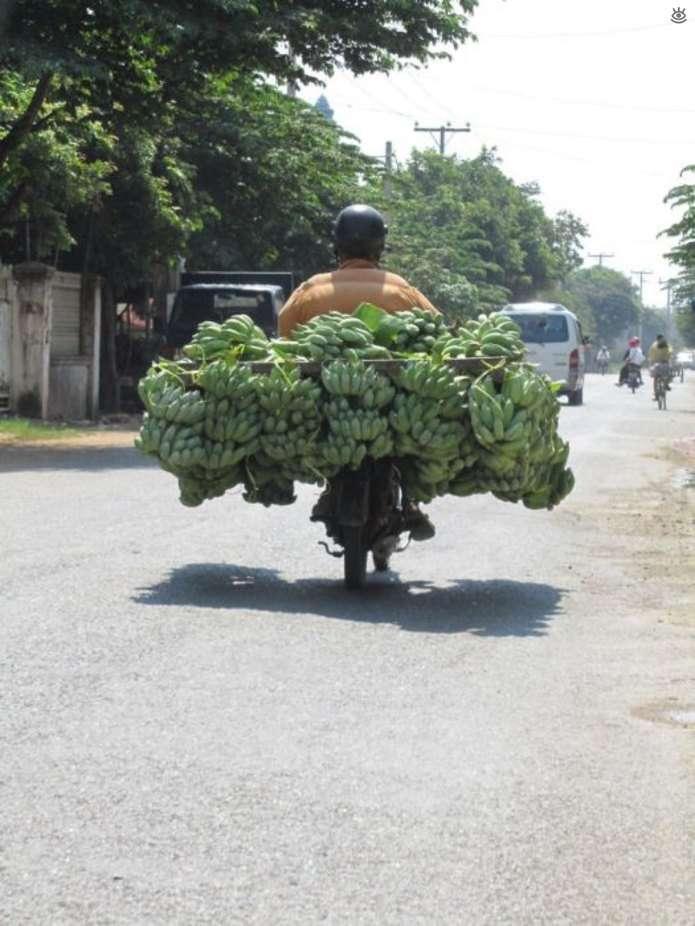 Перевантажили свій транспорт (20 фото)